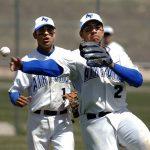 野球のルールがわからない方必見!これだけは知っておきたい野球の基本ルールや用語を紹介します!守備編