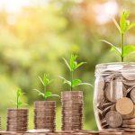 投資素人が低予算でウェルスナビを始めて9ヶ月が経ちました!気になるその利回りは?